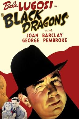 Black Dragons poster